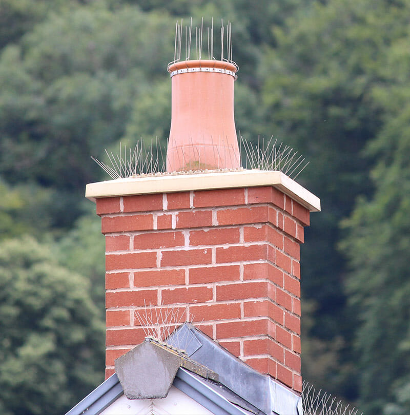 Defender 174 Chimney Pot Strap Bird Spikes Buy Online