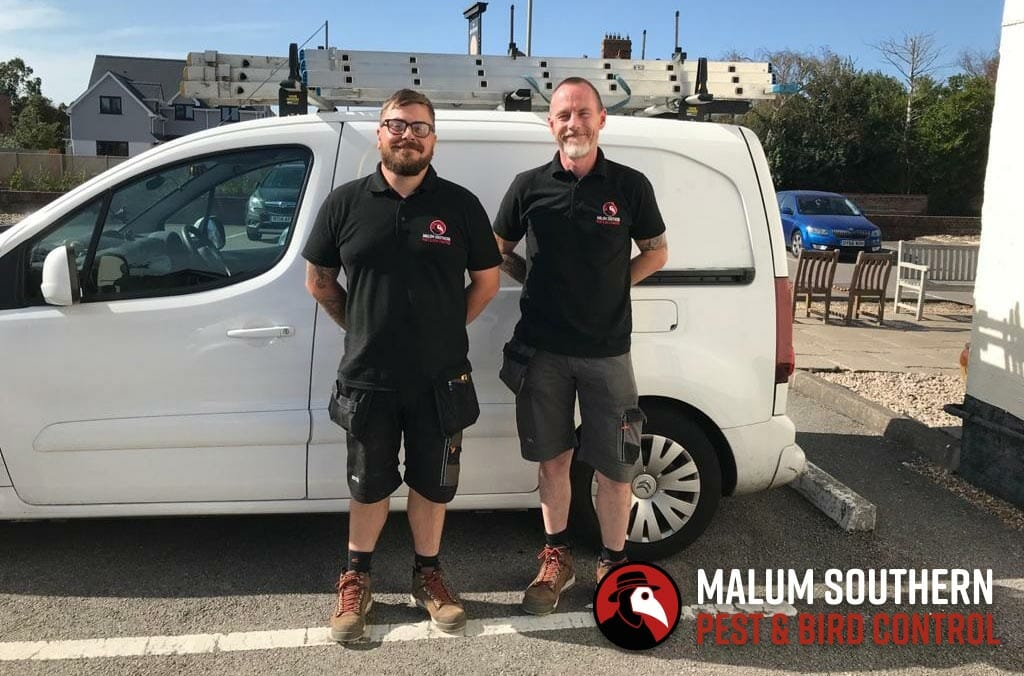 Dean and Dave Malum Southern Directors